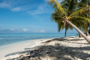 Belize Best Paddle Board Locations