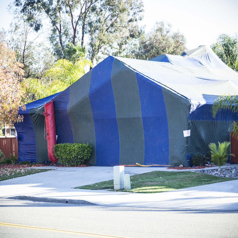 Termite tent covering home.