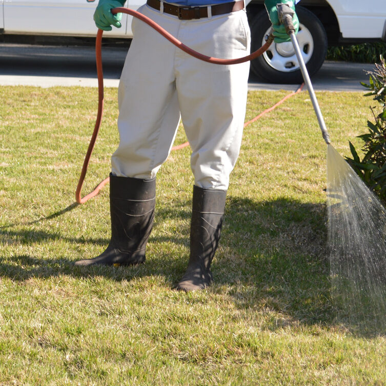 Man with rubber boots and rubber gloves spraying the lawn with fertilizer.