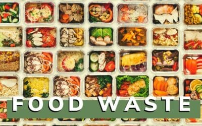 Why Food Waste in the U.S. Is an Urgent Problem