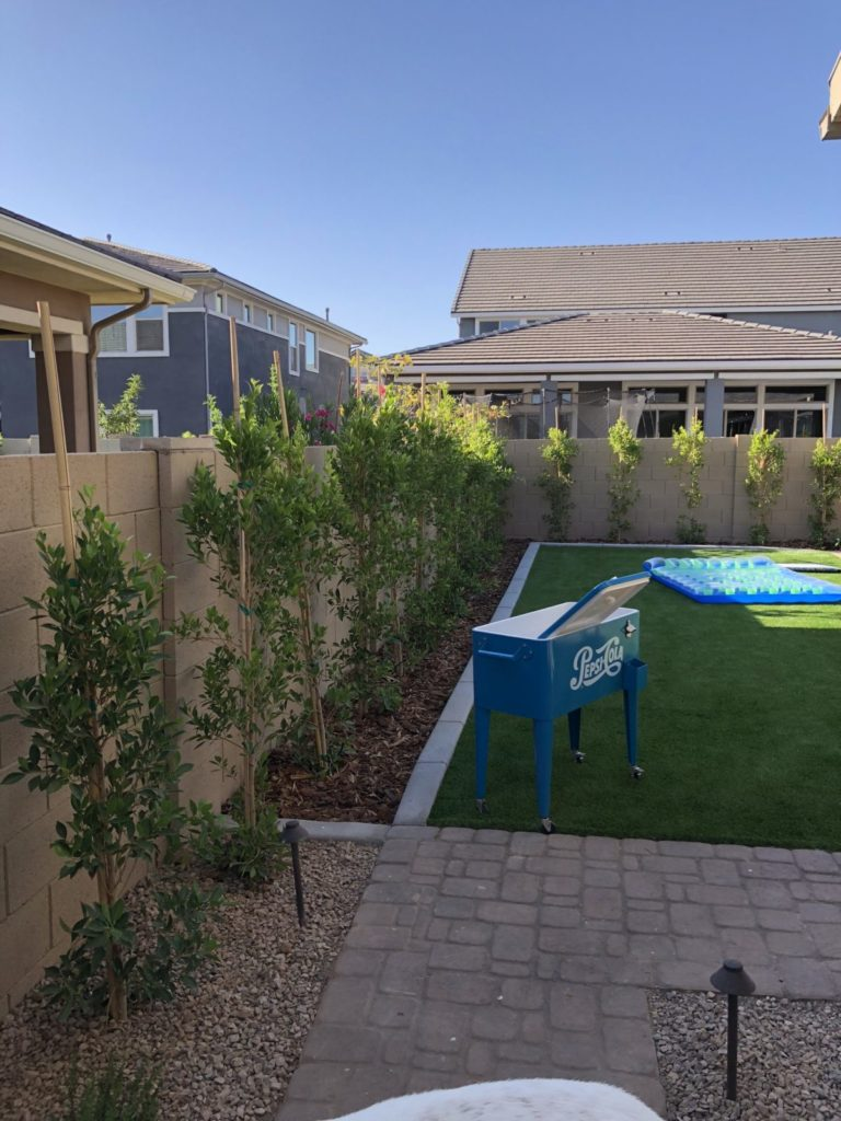 Plant installation lining the fence of a yard.