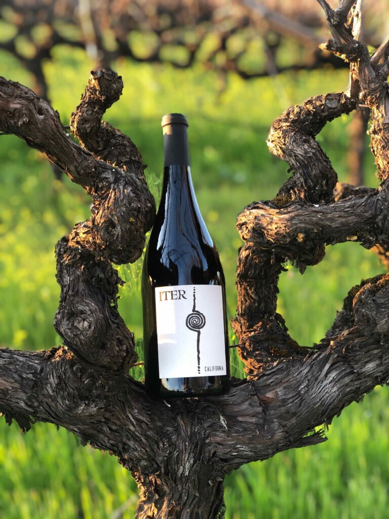 Iter Pinot Noir with Grape Vine