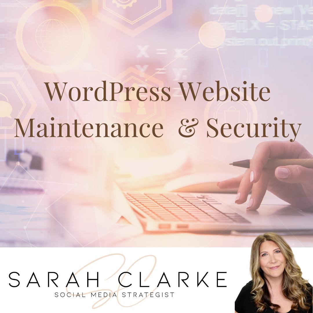 WordPress Website Maintenance Security