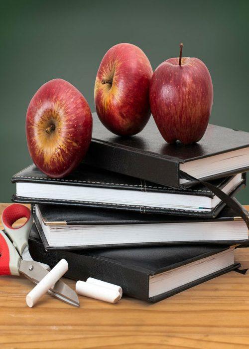 school-2276269_853