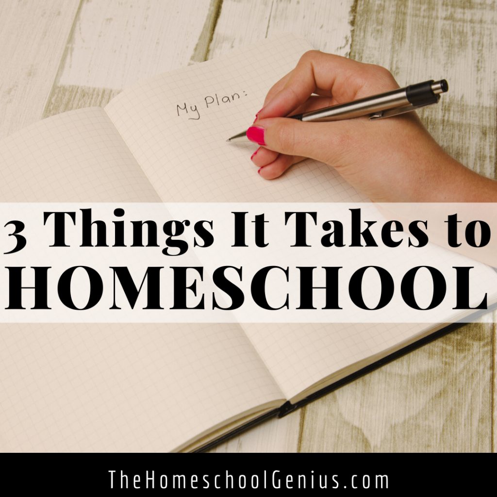 Want to Homeschool? 3 Things It Takes That Noone Mentions