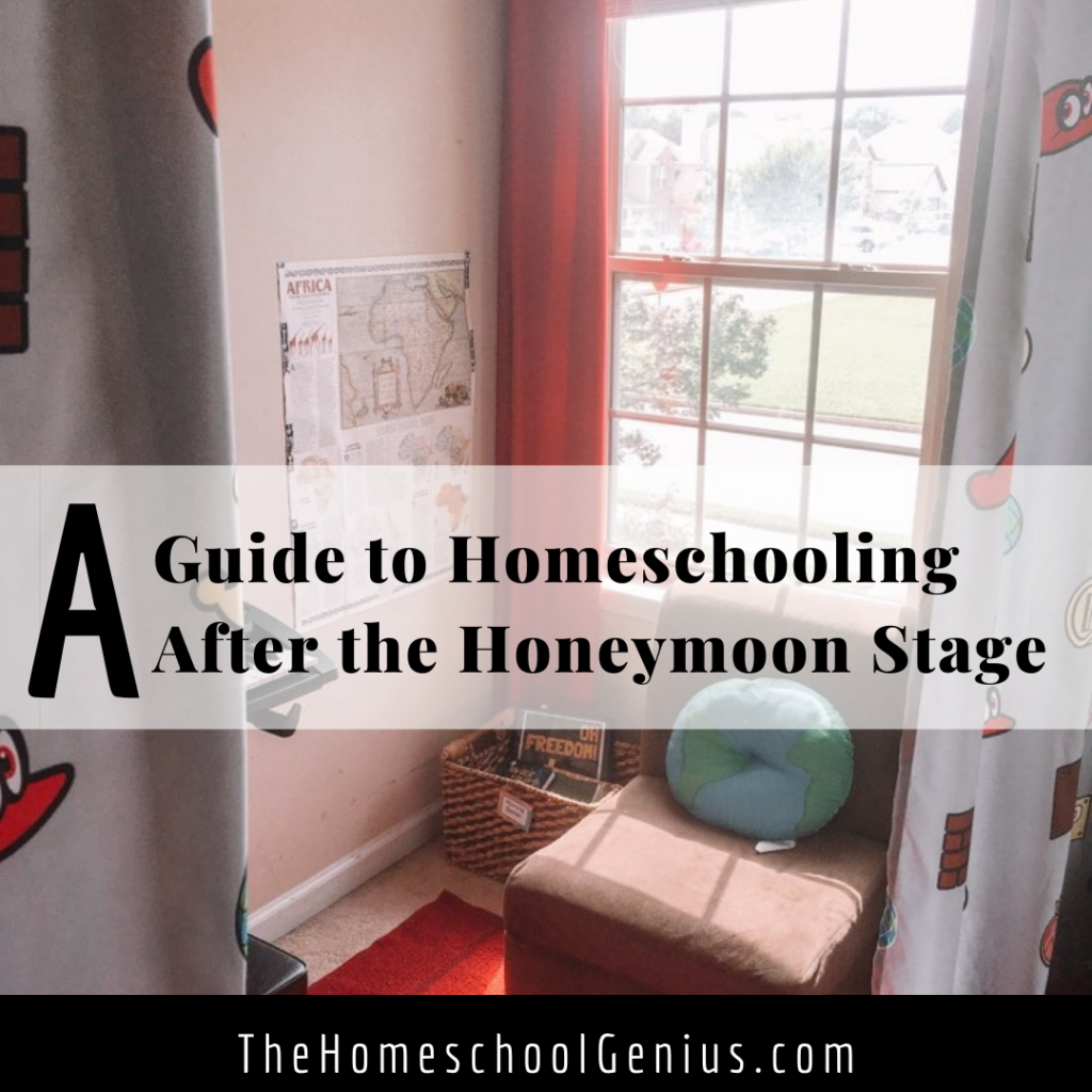 A Guide to Homeschooling After the Honeymoon Stage