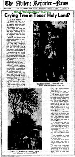 The tree gained so much notoriety, the story broke in several regional, state and national outlets, including the front page of the August 23, 1966 edition of The Abilene Reporter-News.