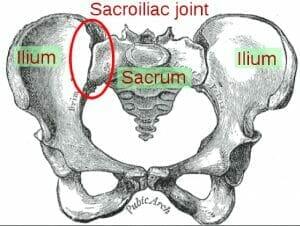 sacroiliac-joint