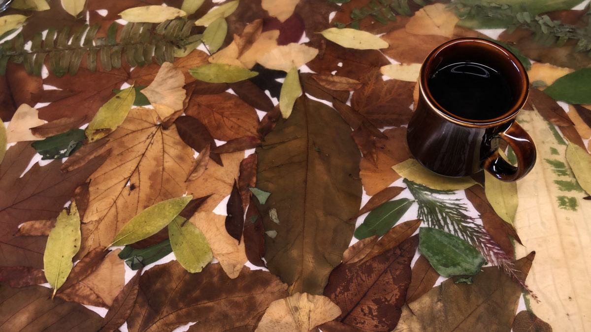 Still life of the hand-laid leaf art countertop of Morning Fork diner in Sacramento, California. The countertop is decorated with dried leaves of different colors and shapes. A full coffee cup sits at the top right of the frame. It feels like home. (Photo by Ben Young Landis)