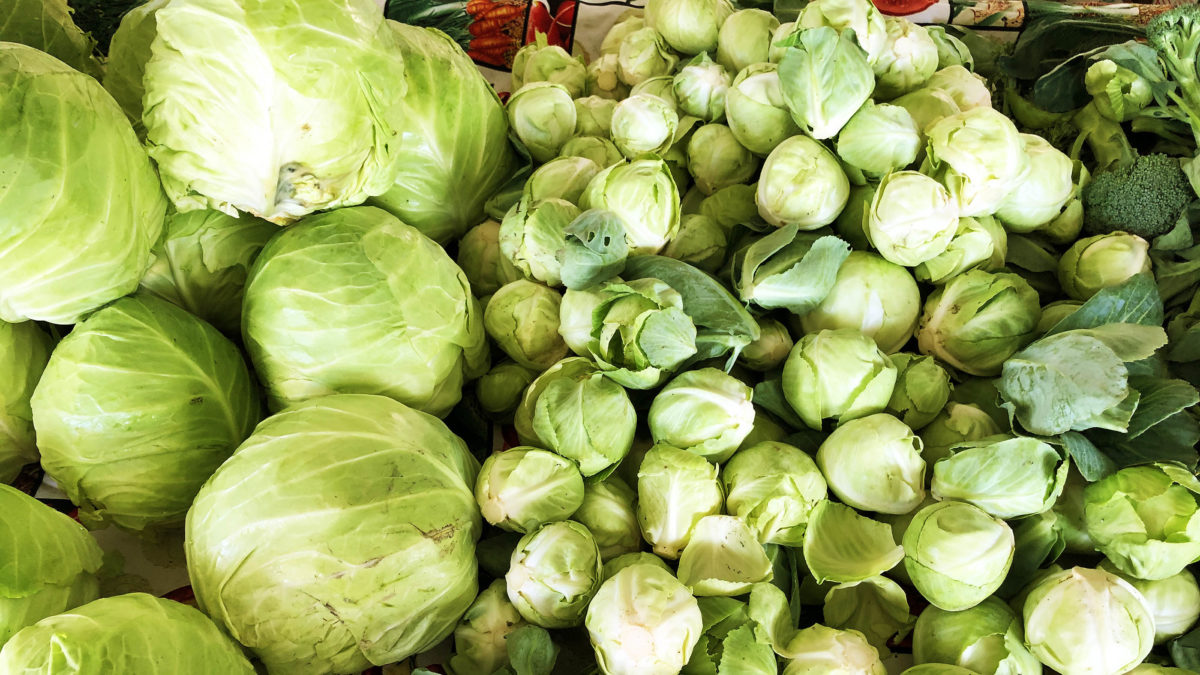 A farmer's market stand in Sacramento, California in December 2019. Several large heads of cabbage are at the left of the shot, while tens of smaller, egg-sized cabbage are spread out to the right, with a few florets of broccoli. (Photo by Ben Young Landis)