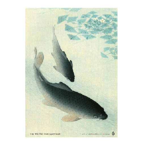 Koson, a famous japan woodblock print artist depicting Two carp, the personification of perseverance and a symbol of marriage.