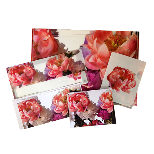 Three Folders (Letter-sized pocket folder, #10 envelope-sized folder, and a postcard-sized folder), with two note cards (including envelopes) using the vivid photograph of peonies by Dr. Porter in Brandwine, PA.