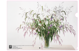 Paula Chamlee, From the Field - Buddleia and wild grass