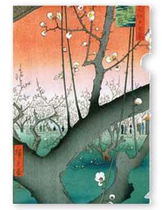 shibui classic collection folder