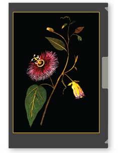 shibui neu collection folder
