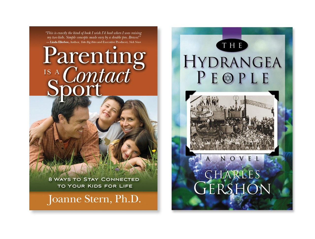 Parenting is a Contact Sport by Joanne Stern