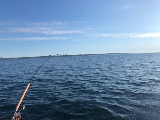 RT Sport Fishing