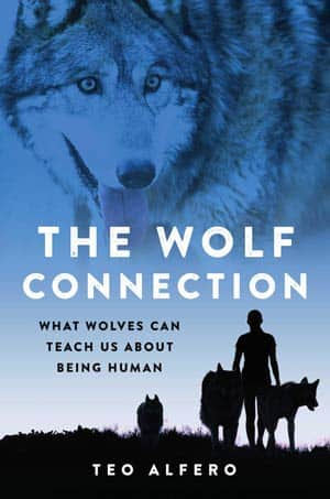 The-Wolf-Connection-book-cover