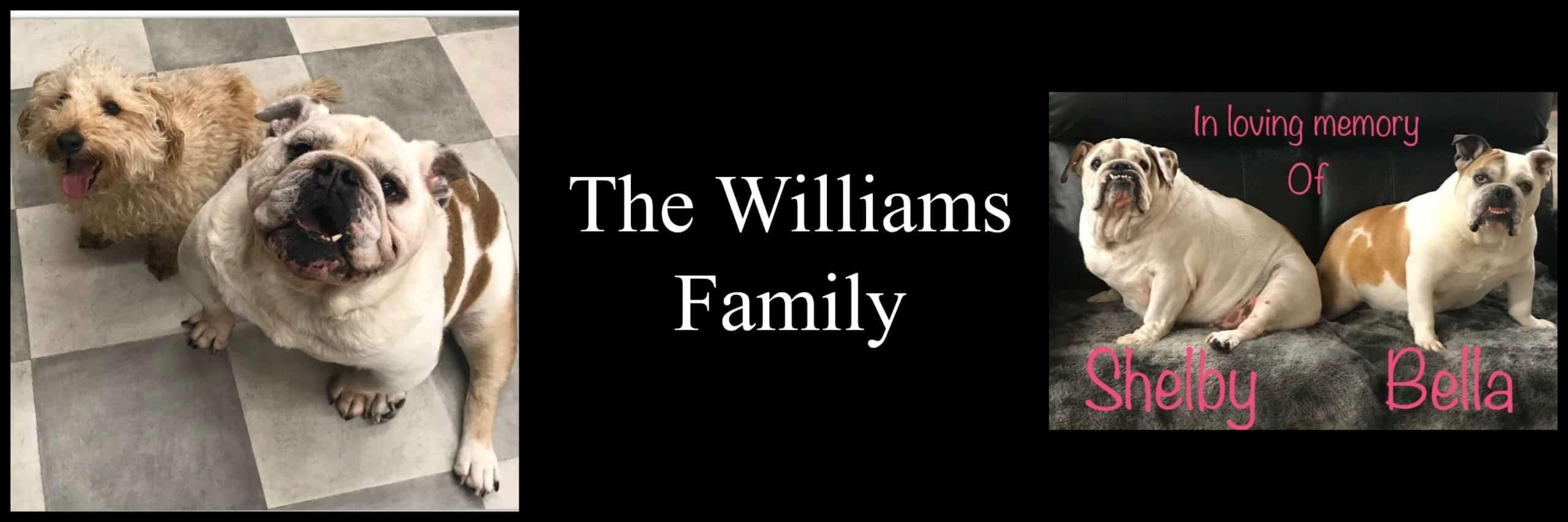5,000-williams2