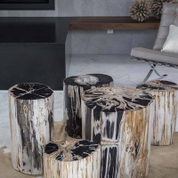 Petrified wood stump stools or side tables