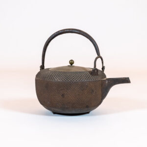 Japanese Cast-Iron Tea Kettle (teapot)