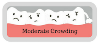 moderate crowding