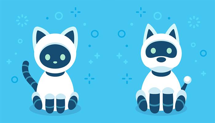 A robo-pet for companionship?