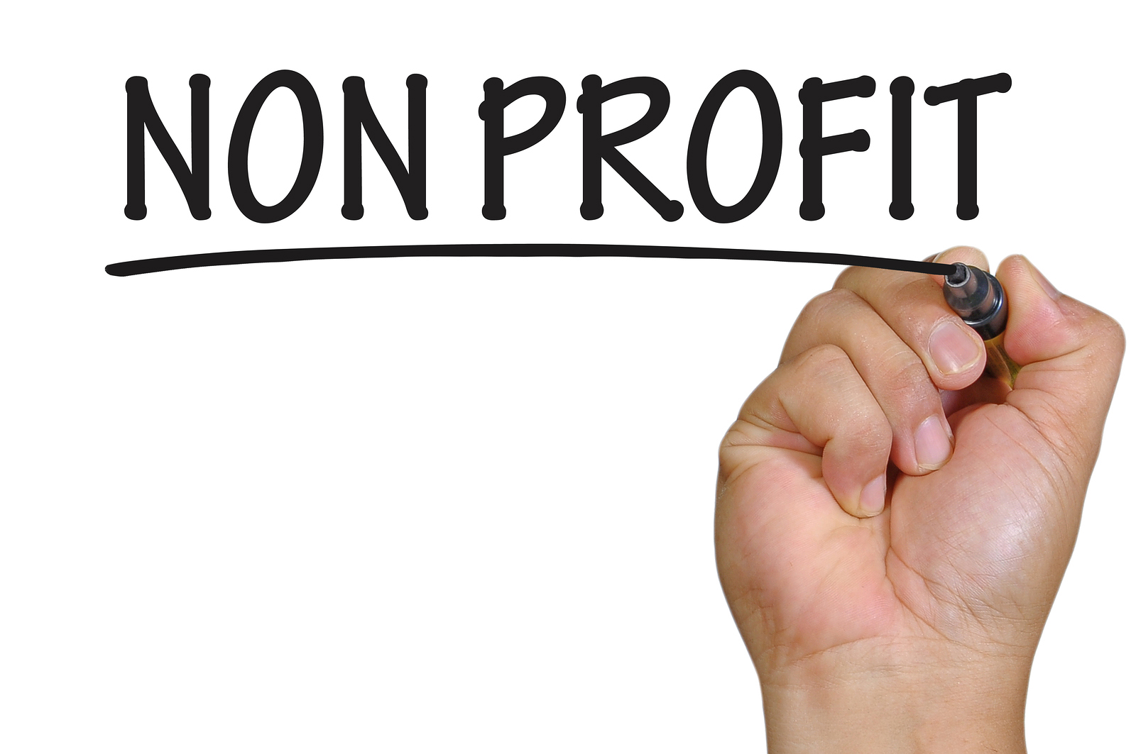 Non Profit Organizations Insurance