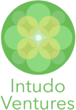 Intudo Ventures logo