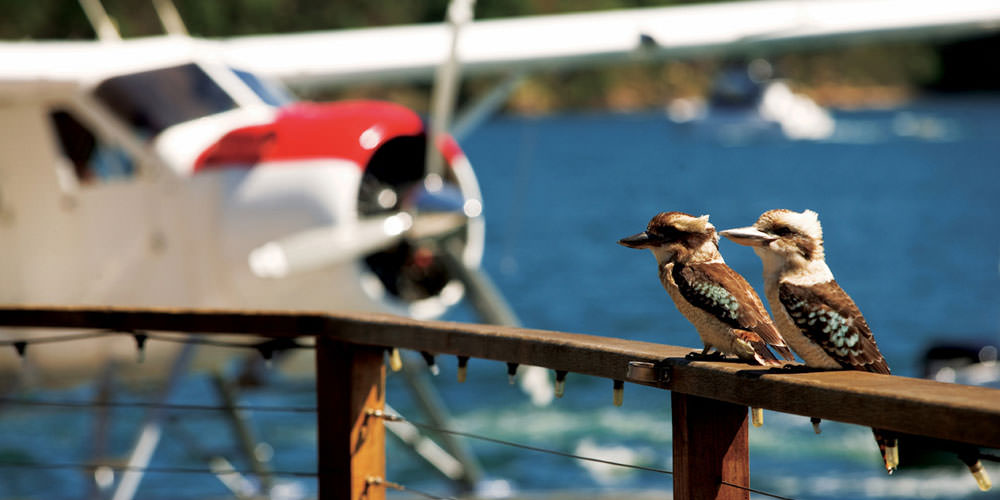 Fly and dine with Sydney Seaplanes