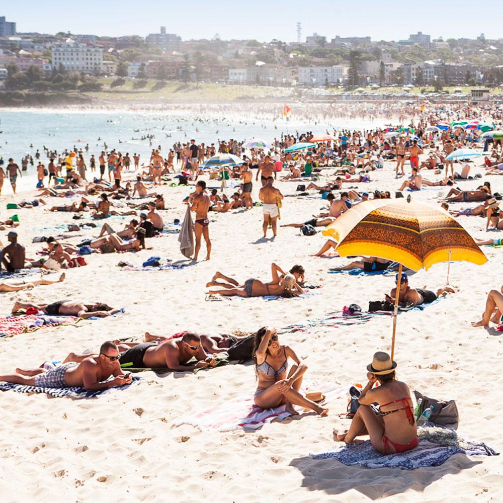 beach tour of sydney bondi eastern suburbs coast