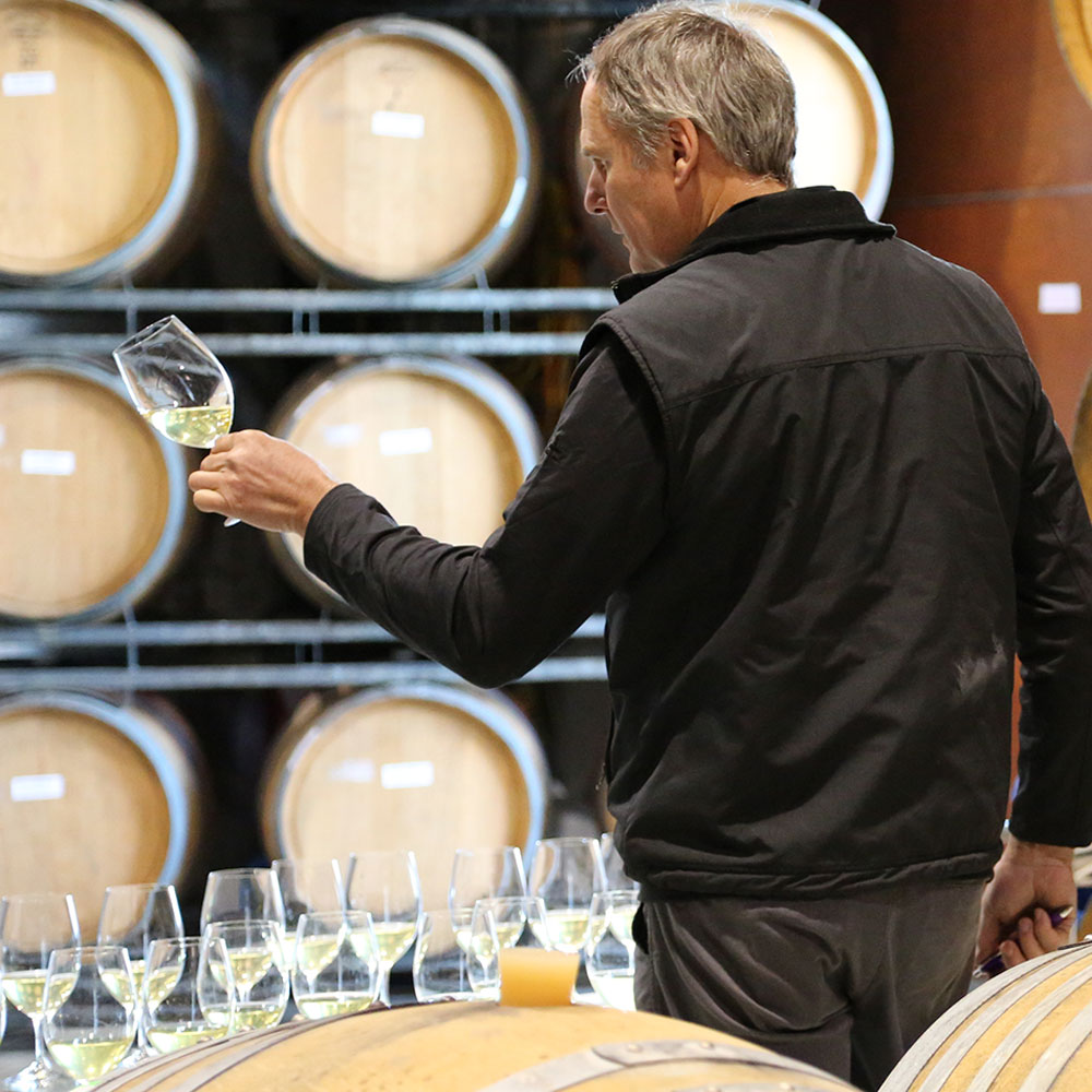 Image of Tullock Vineyard wine tasting - Hunter Valley private tour