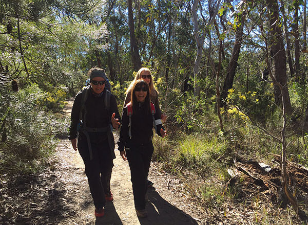 An extra day hike or bush walk in the Blue Mountains private tour