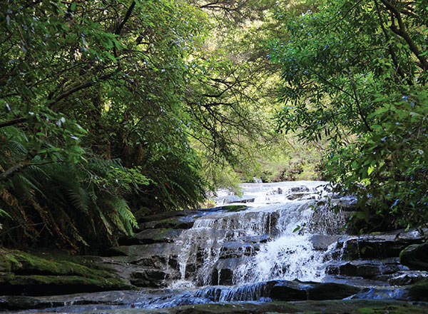 Waterfalls in the Blue Mountains on a private tour