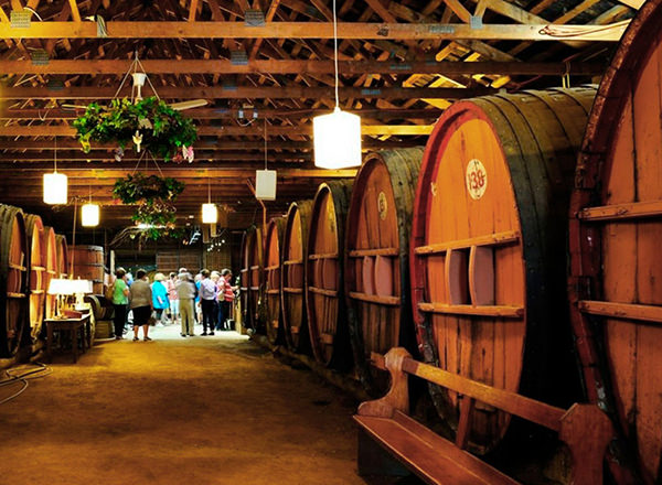 Image of wine making masterclass with old wooden wine barrels on your Hunter Valley Private Tour