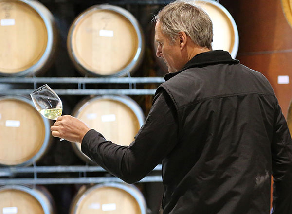Image of drinking wine from the barrel Tullock vineyard - Hunter Valley Private Tour
