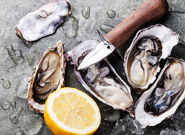 Image of a Fresh Sydney Rock Oysters on the Sydney Private Tour - Half Day Sydney Tours