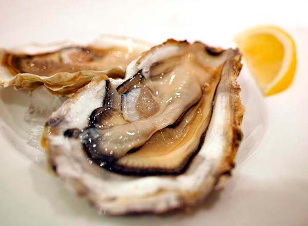 An image of a fresh local oysters on your foodie Taste of Sydney private tour
