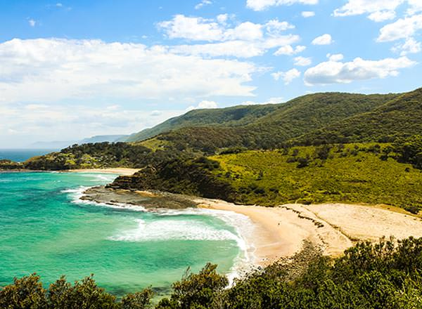 An image of a stunning beach on the Royal National Park Private Tour