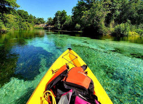 An image of kayaking on the Royal National Private Day Tour