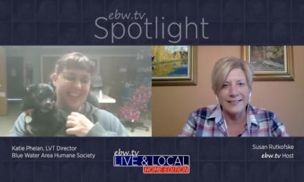 Spotlight  – Katie Phelan