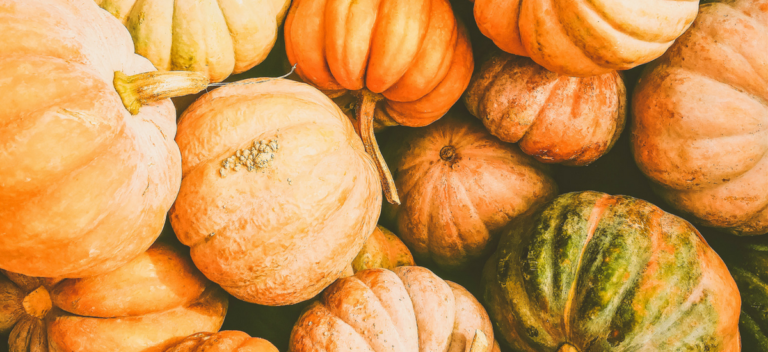Fall Harvest Fest at the Marie