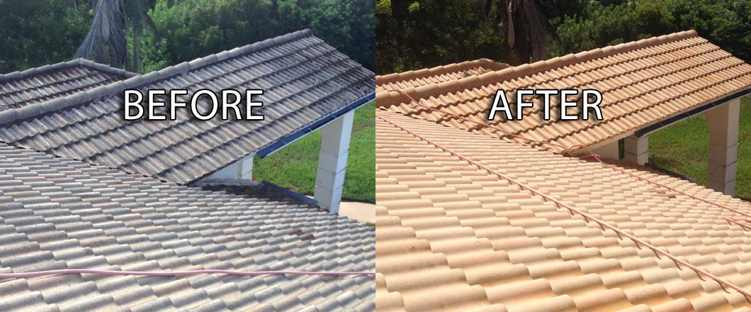 roof cleaning before after
