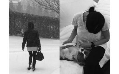 Vet Makes House Call Despite Snow Storm