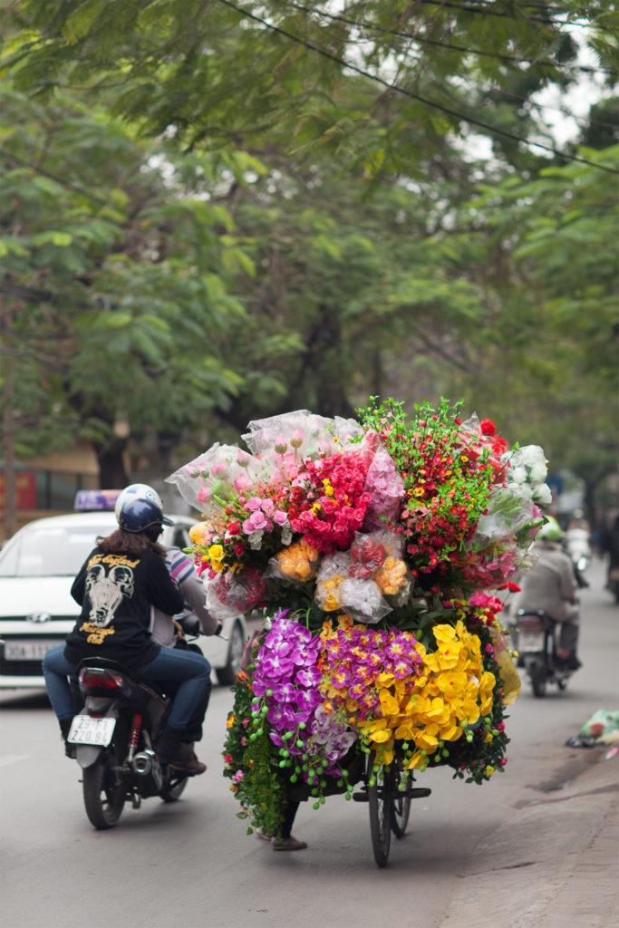 Vietnam-qfb-660