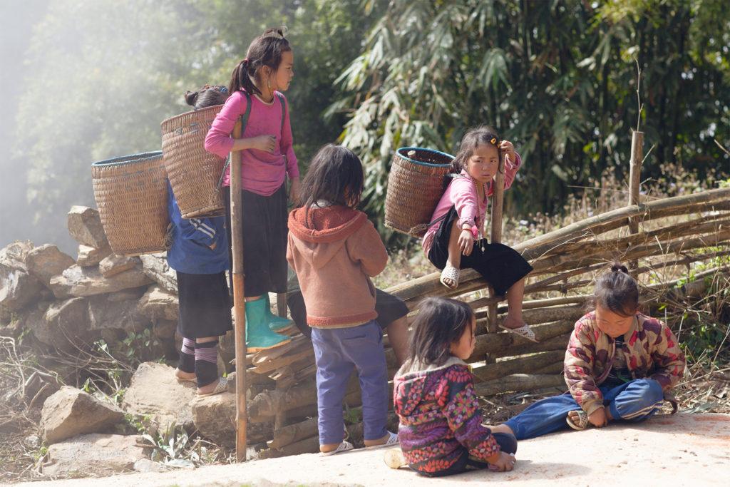 Vietnam-qfb-958
