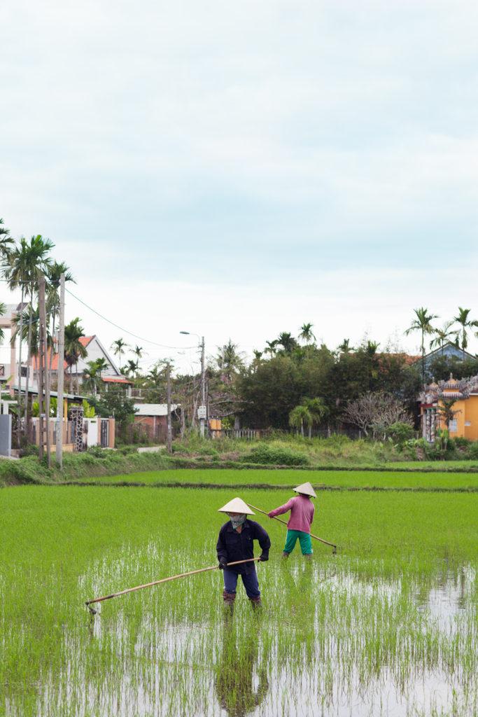 qfb - Hoi An2- Vietnam -2454
