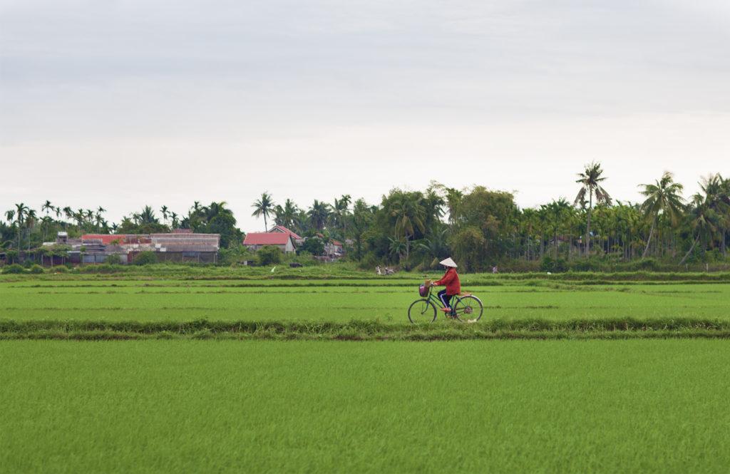 qfb - Hoi An3- Vietnam -87