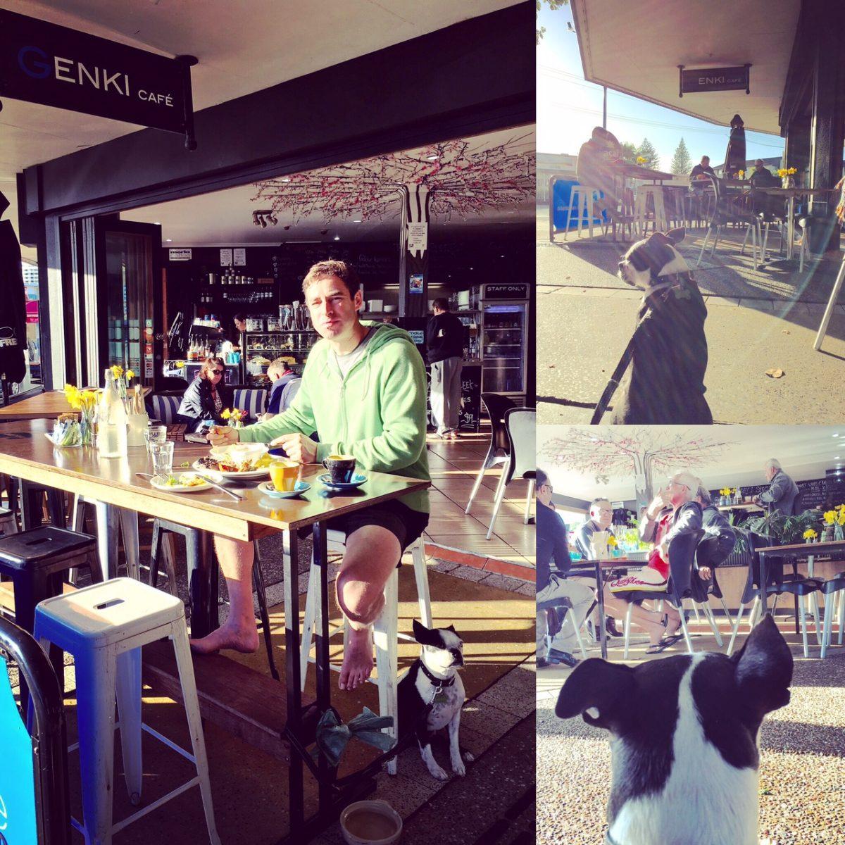 Brain's Pet Friendly Café Discovery Mission – Genki Cafe