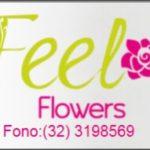 feel_flowers